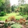 Greener Living Tips-Landscaping