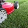 Lawn & Landscape — Typical Warranty & Maintenance